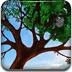 世界之树保卫战