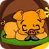 小猪逃出森林