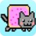 愤怒的霓虹猫