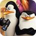 疯狂企鹅过圣诞
