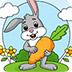 复活彩蛋图画册