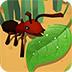 昆虫大世界